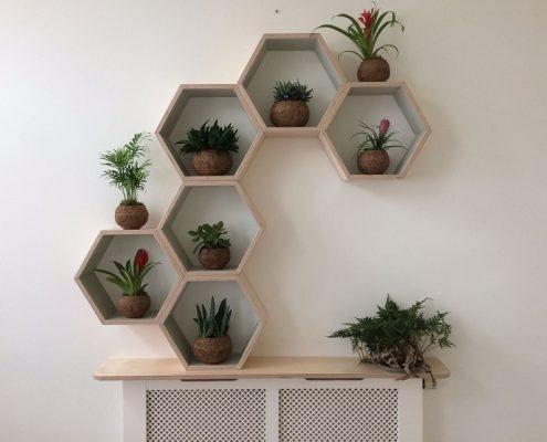 compositie van houten honingraten met plantjes, handgemaakt